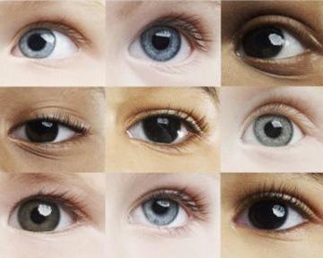 Цвета глаз оттенки
